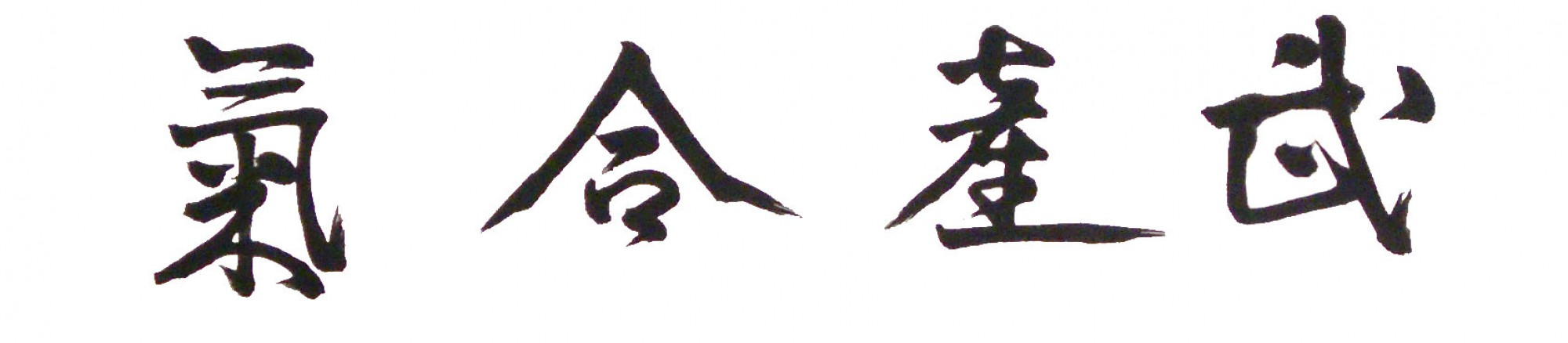 Associazione Internazionale Aikido